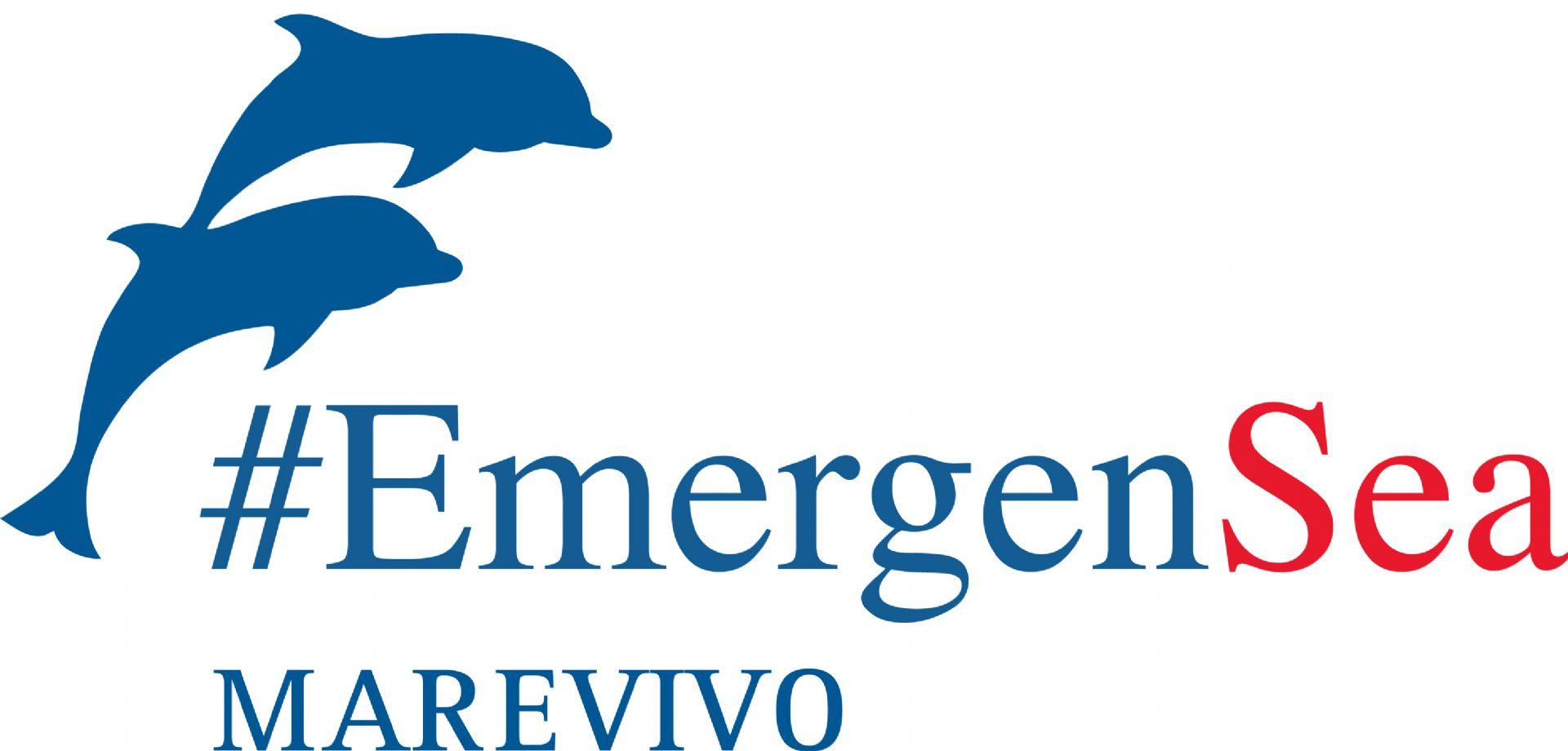 Conferenza per la salvaguardia del mare #EmergenSea -incontro con De Magistris